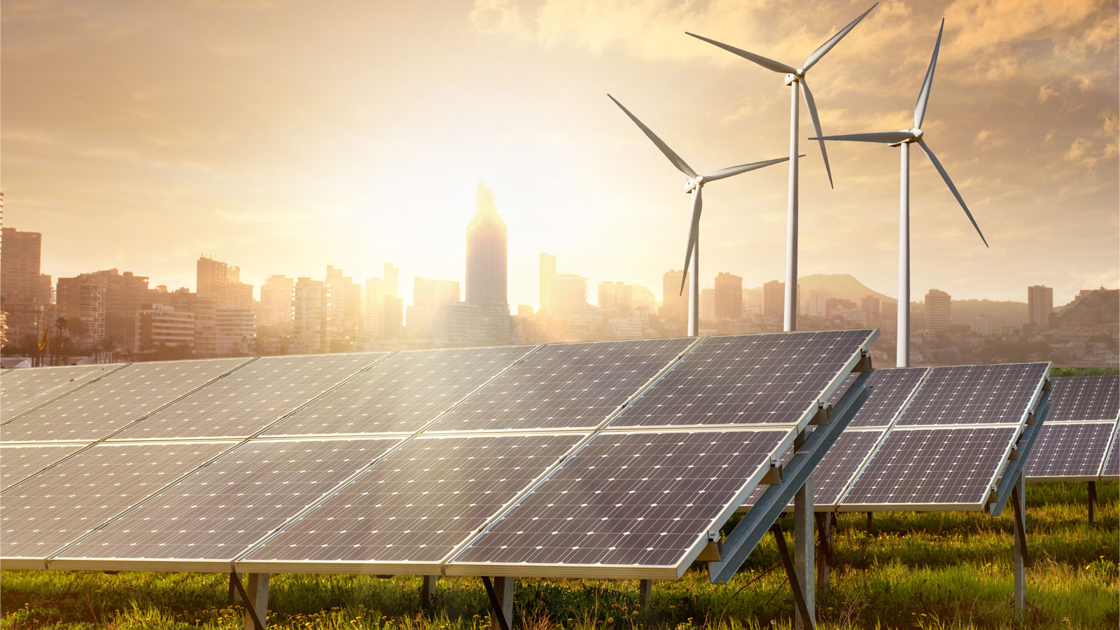 Green Energy  Market Insights, Trends & Growth Outlook