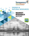 Liquefied Natural Gas Market