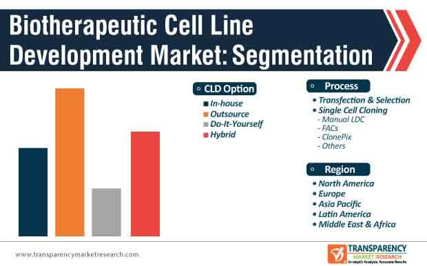Biotherapeutic Cell Line Development Market Segmentation
