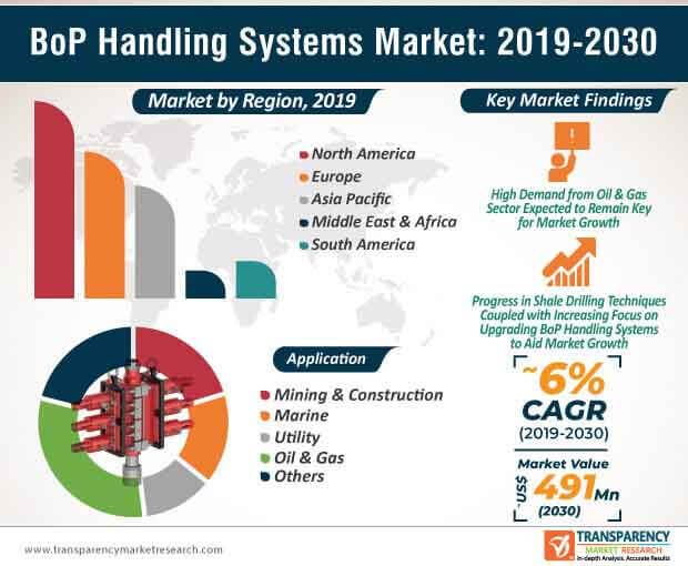 BoP Handling Systems Market Infographic