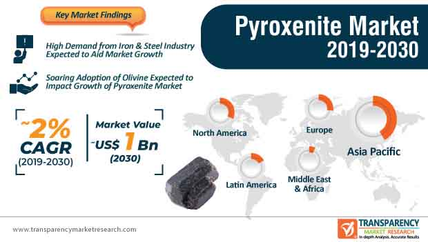 Pyroxenite Market Infographic