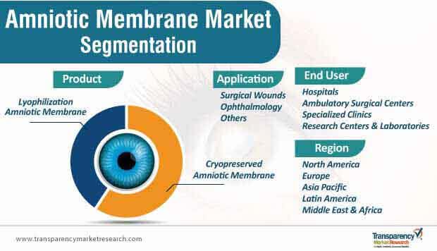 amniotic membrane market segmentation