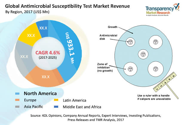 Antimicrobial Susceptibility Test  Market Insights, Trends & Growth Outlook