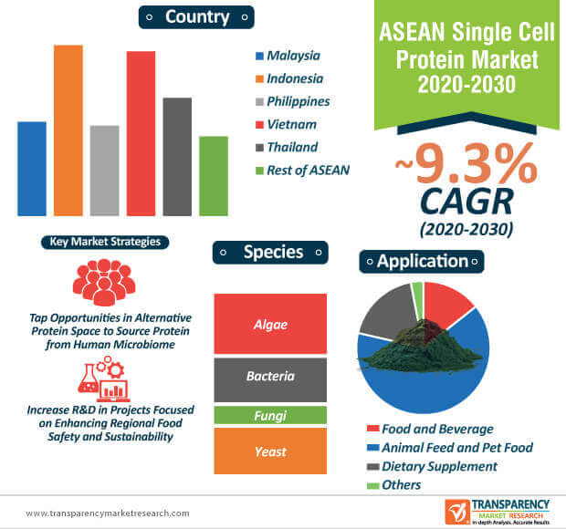 asean single cell protein market infographic