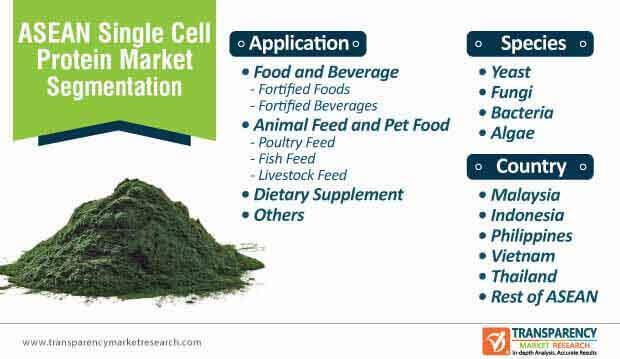 asean single cell protein market segmentation