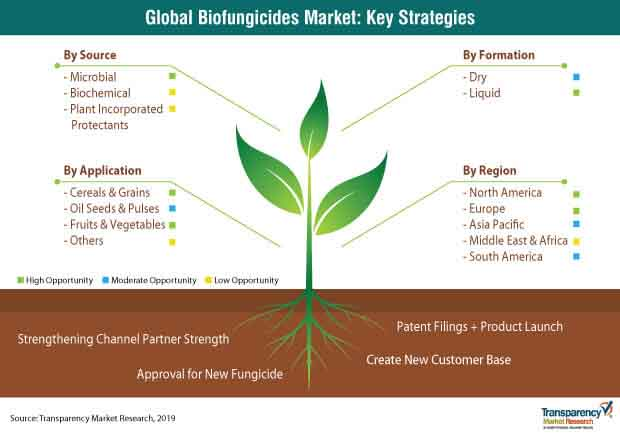 biofungicides market strategy