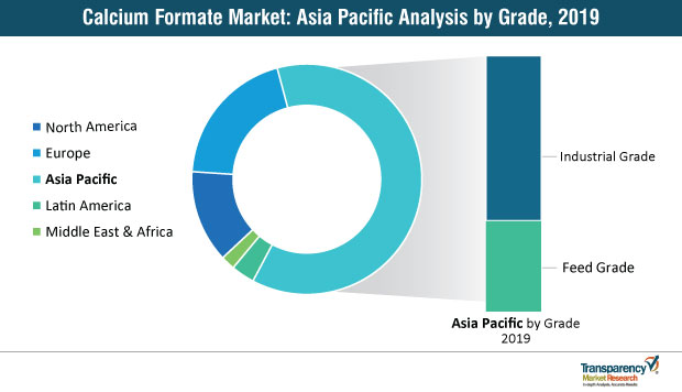 calcium formate market by region