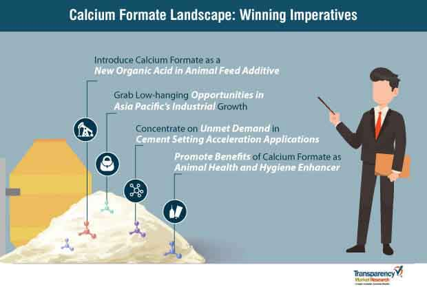 calcium formate market winning imperatives