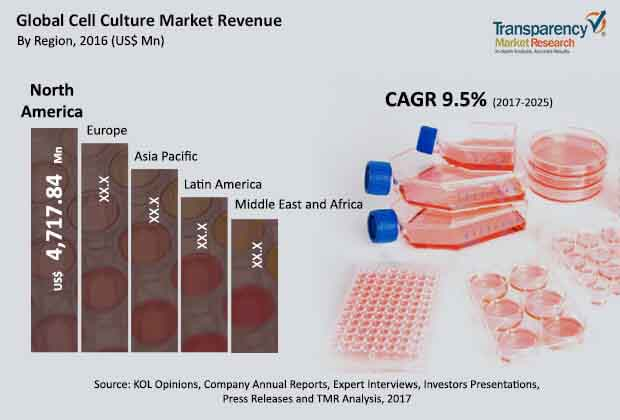 Cell Culture  Market Insights, Trends & Growth Outlook