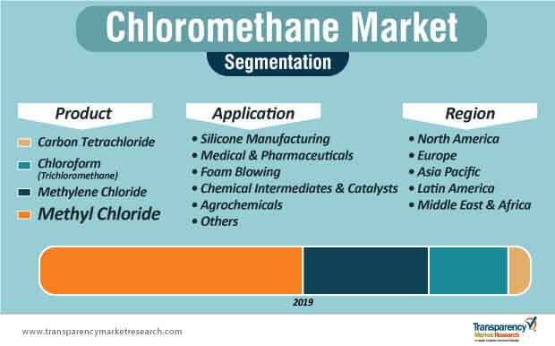 chloromethane market segmentation