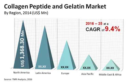 collagen peptide gelatin market