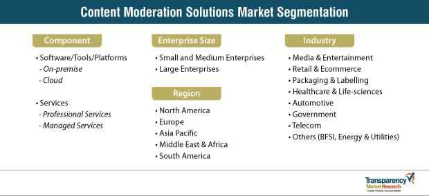 content moderation solutions market segmentation