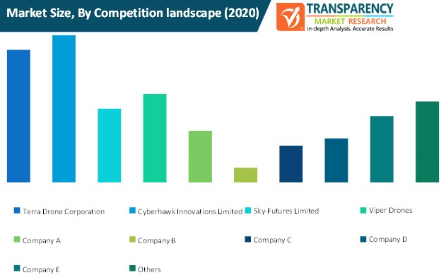 drone based consulting services market size by competition landscape