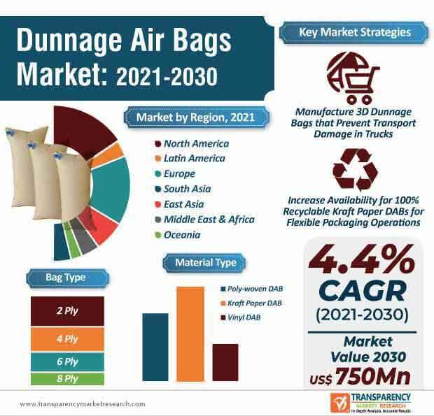 dunnage air bags market infographic