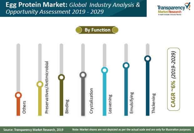 egg protein market share