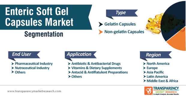 enteric soft gel capsules market segmentation