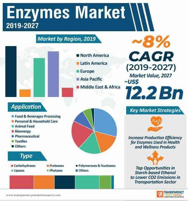 enzymes market infographic