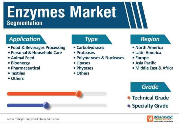enzymes market segmentation