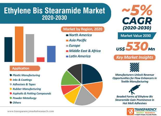 ethylene bis stearamide market infographic