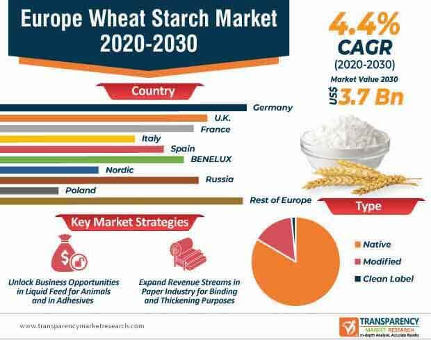 europe wheat starch market infographic