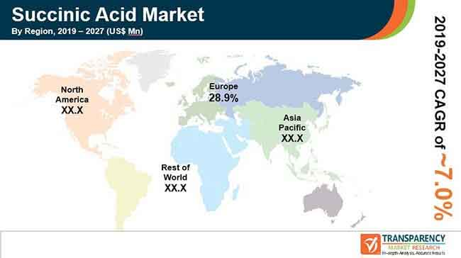 Succinic Acid  Market Insights, Trends & Growth Outlook