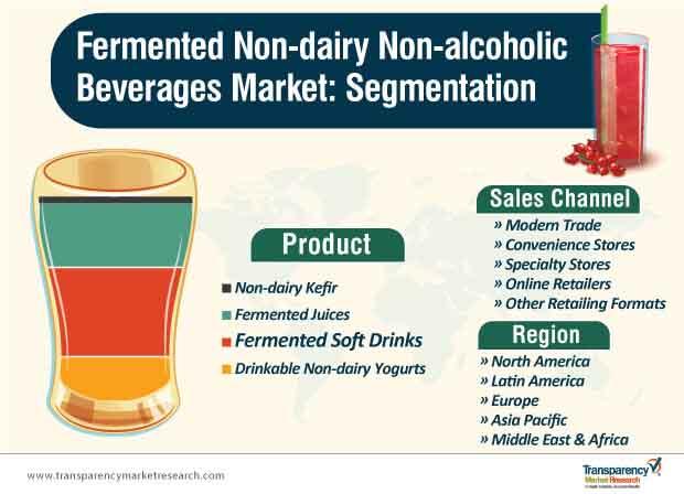 fermented non dairy non alcoholic beverages market segmentation