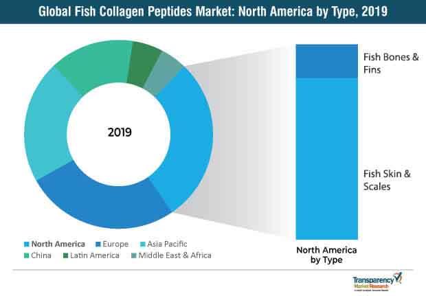 fish collagen peptides market