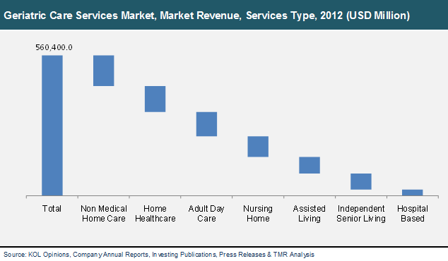 Geriatric Care Services Market Global Industry Analysis