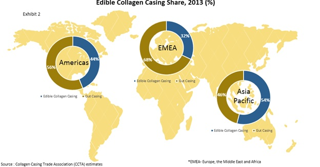 global edible casing market