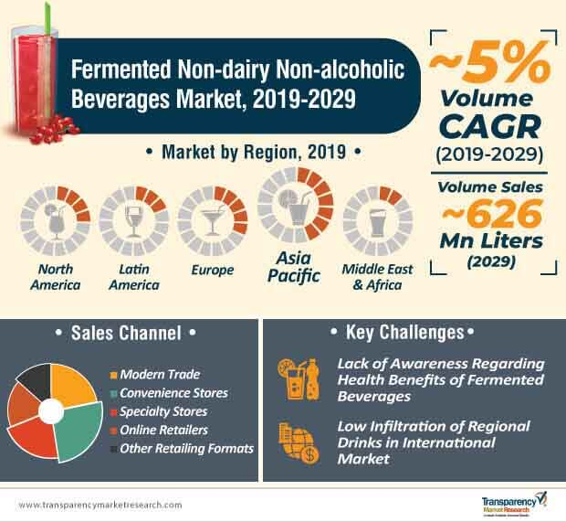 Fermented Non-dairy Non-alcoholic Beverages  Market Insights, Trends & Growth Outlook