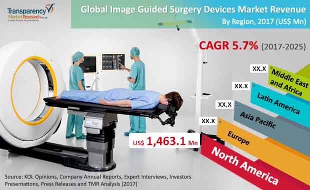 global image guided surgery devices market