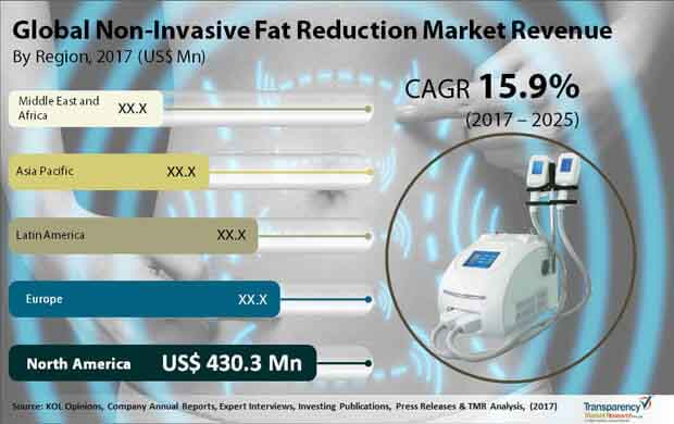 global non invasive fat reduction market
