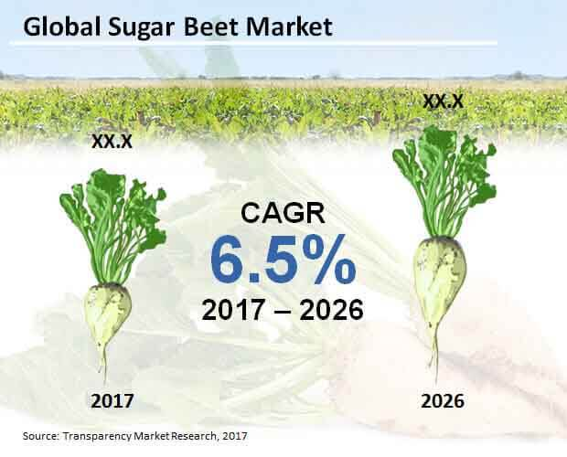global sugar beet market