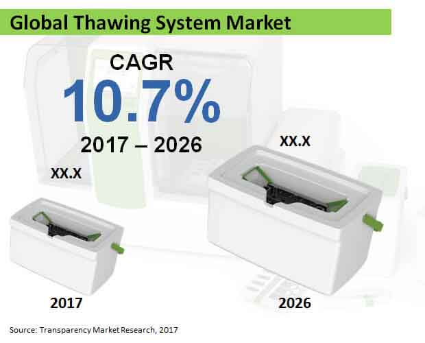 global thawing system market