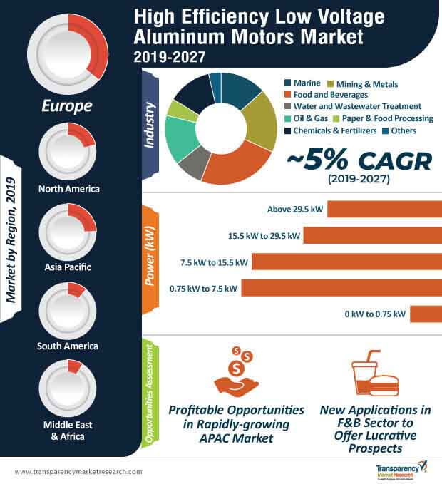 high efficiency low voltage aluminum motors market infographic
