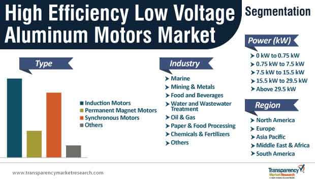 high efficiency low voltage aluminum motors market segmentation