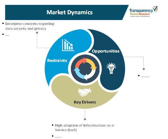 hosting infrastructure services market 1