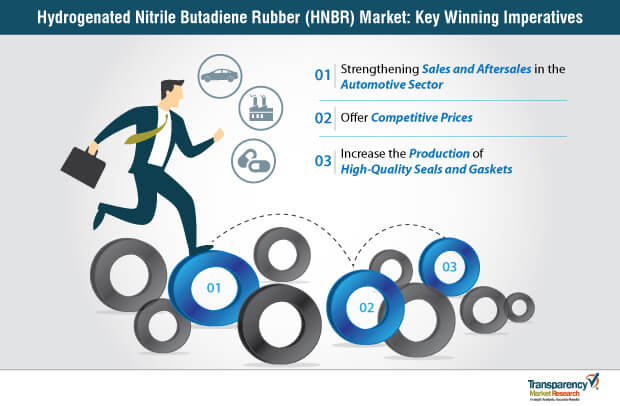 Hydrogenated Nitrile Butadiene Rubber (HNBR)  Market Insights, Trends & Growth Outlook