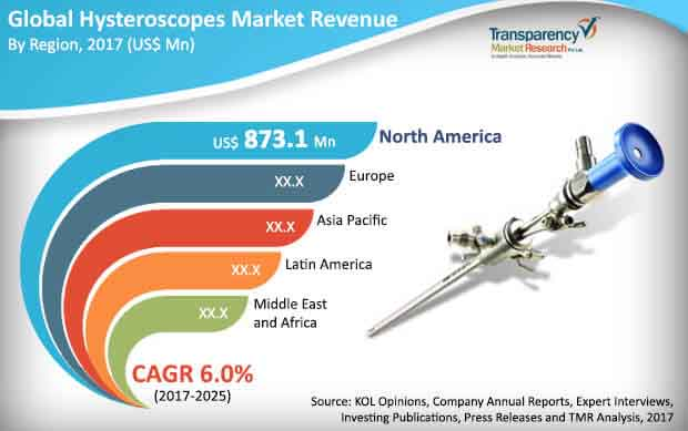 hysteroscopes market