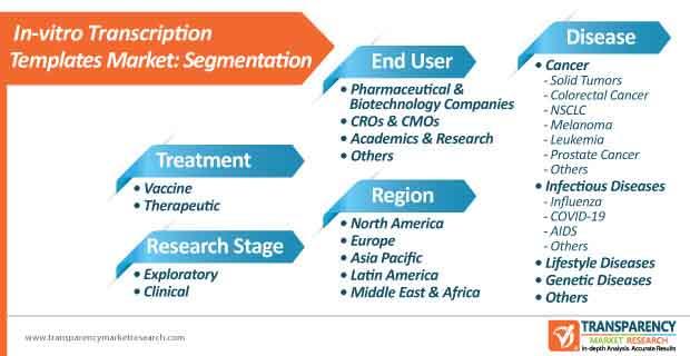 in vitro transcription templates market segmentation
