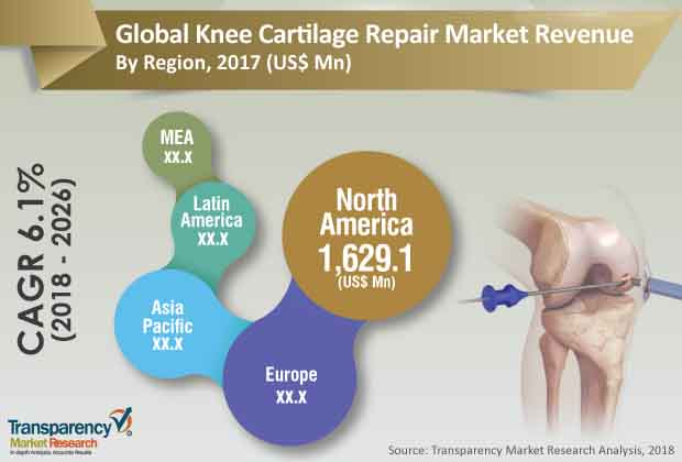 knee cartilage repair industry