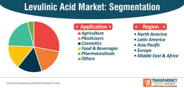 levulinic acid market segmentation