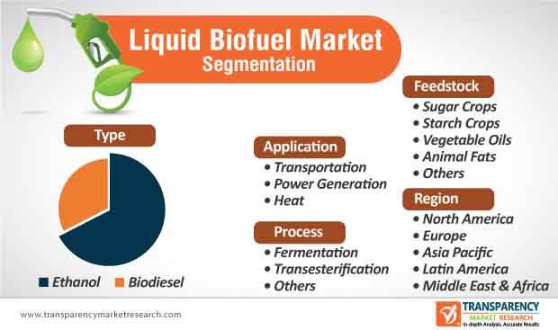 liquid biofuel market segmentation