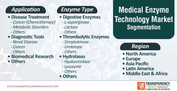 medical enzymes technology market segmentation