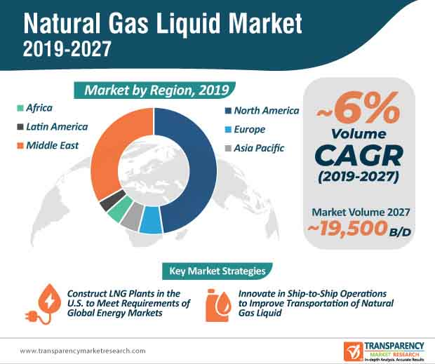 Natural Gas Liquid  Market Insights, Trends & Growth Outlook