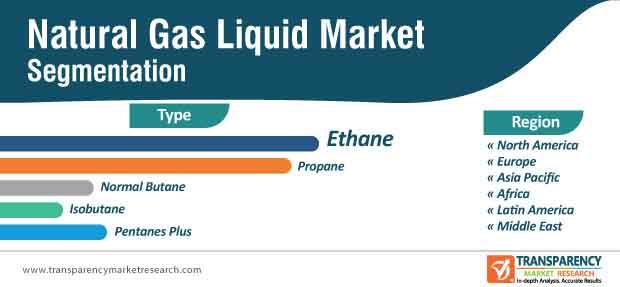 natural gas liquids market segmentation