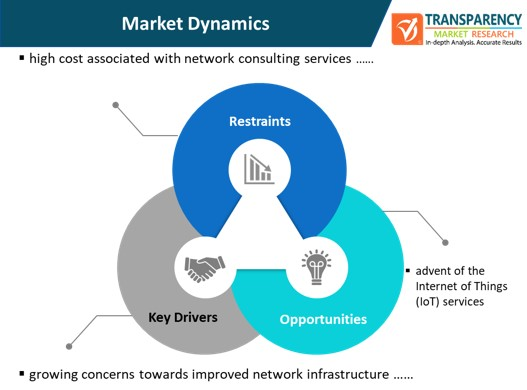 network consulting services market dynamics