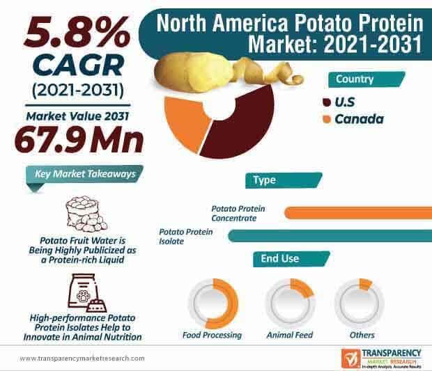 north america potato protein market infographic