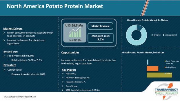north america potato protein market