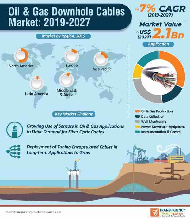 Oil & Gas Downhole Cables  Market Insights, Trends & Growth Outlook
